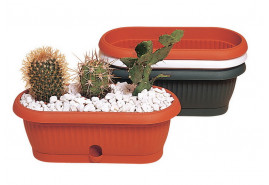 kwietnik do kaktusów